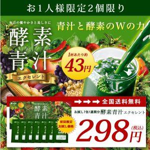 酵素青汁お試しセット 【送料無料】
