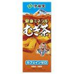 【特価】 29%オフ 伊藤園 健康ミネラルむぎ茶 (紙パック) 250ml×24本【食品・飲料】