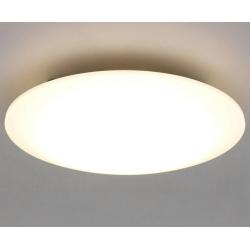 LEDシーリングライト 12畳向け CL12DL-5.0 4,980円 送料無料【NTT-X Store】特価