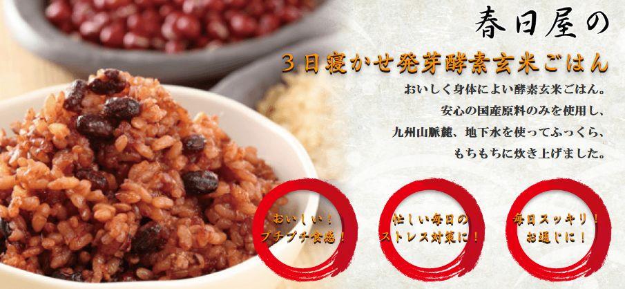 3日寝かせ玄米酵素ごはん 15食 30食