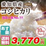「平成28年 愛知県産コシヒカリ」 冷めても美味しいお米が特価販売中