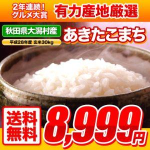 「平成28年 大潟村産あきたこまち」 グルメ大賞お米部門2年連続受賞のお米が特価販売中